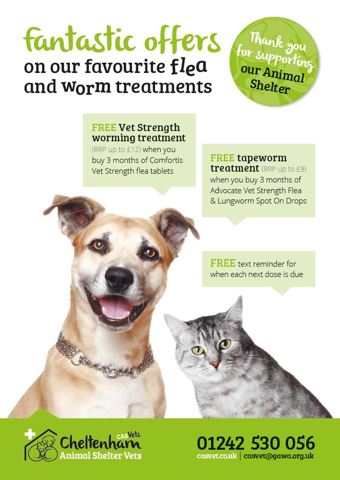 flea-worm-poster