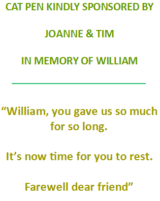 Tim & Joanne